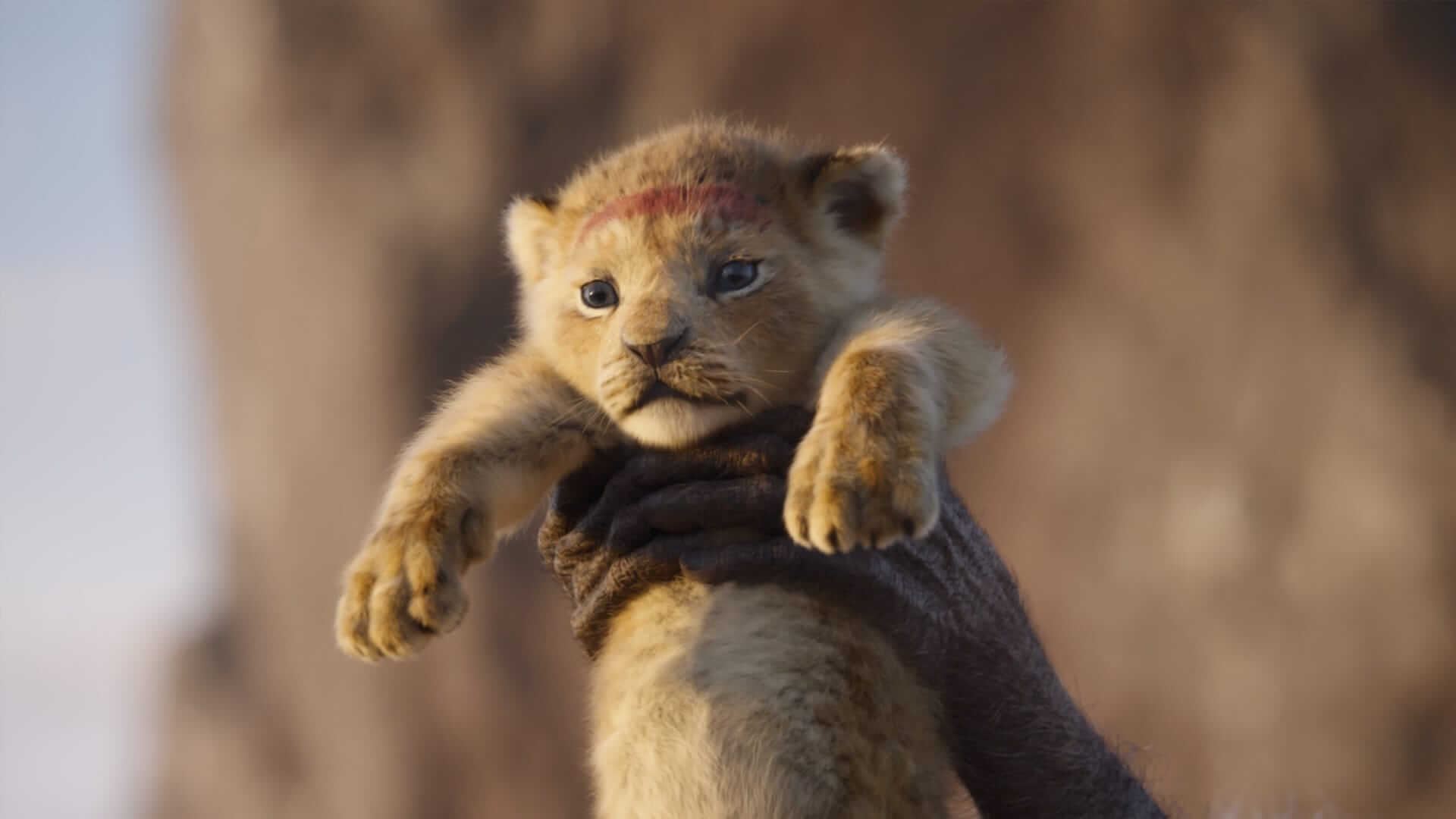 The Lion King On Track To Gross 150 Million At The Box