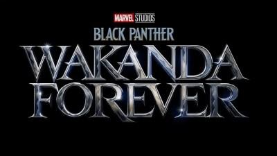 black-panther-wakanda-forever-1625049503243