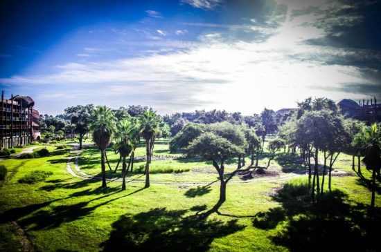 Kidani Village savanna view