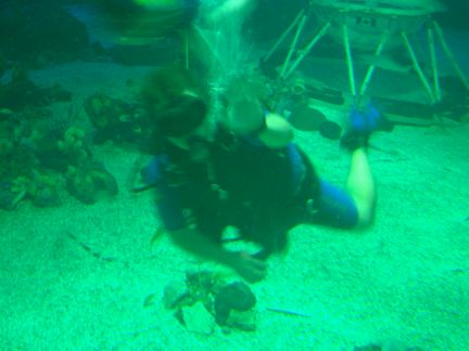 CW The Living Seas Diving Throwback Thursday