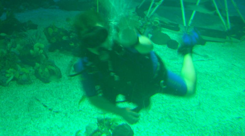 CW The Living Seas Diving Throwback Thursday