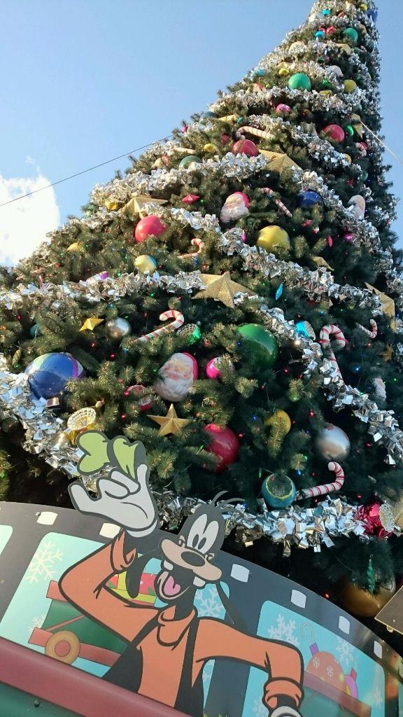 Gawrsh, The Tree is Pretty - Wordless Wednesday