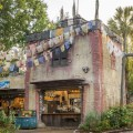 Thirsty River Bar - Animal Kingdom