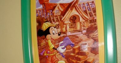Mickey house construction photo - Throwback Thursday