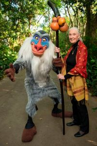 Dr. Jane Goodall with Rafiki at Disney's Animal Kingdom