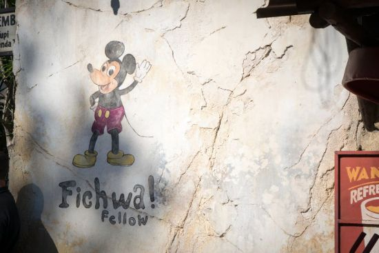 "According to the all-knowing Google, Fichwa means ""hidden in Swahili. So this is a not-so-Hidden Mickey"