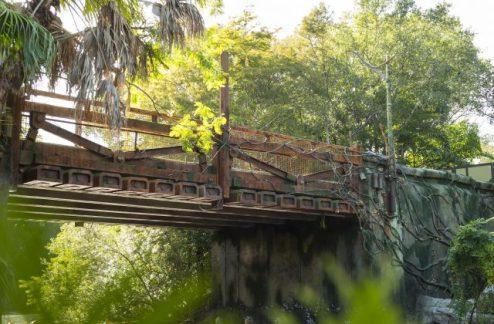 Pandora Disney's Animal Kingdom Bridge