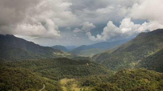 Mountains of the Alto Mayo Protected Forest.