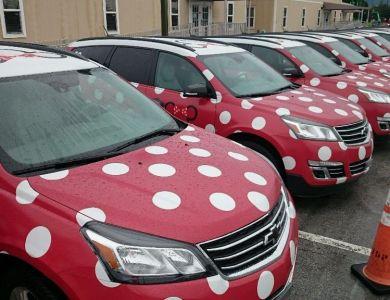 Minnie Vans Wordless Wednesday