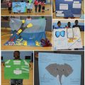 Student posters Disney conservation