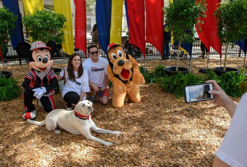 Paws in the Park Mickey Pluto