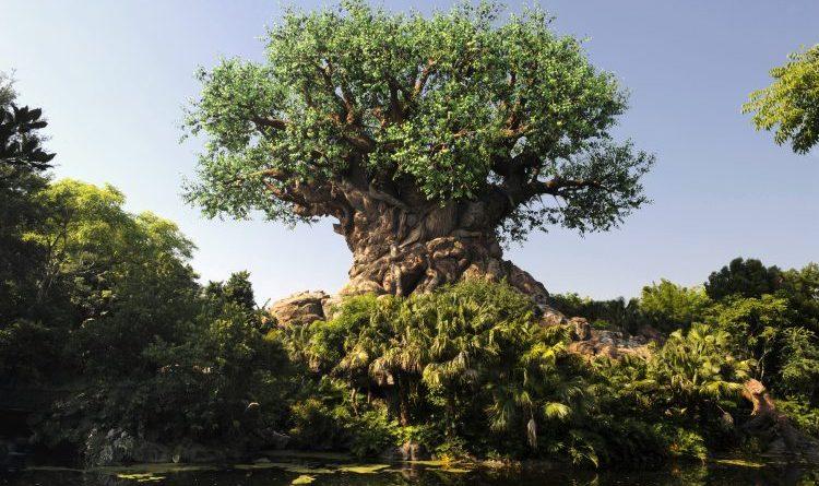 Disney Tree of Life Animal kingdom