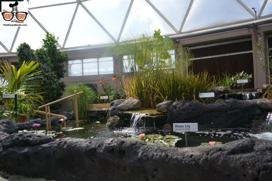 """New """"Water Garden"""" inside Living with the Land"""