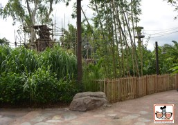 A new pathway recently opened at Disney Animal Kingdom - The Monkey's are to the left, the path leads behind the monkeys to Kali River Rapids - it also provides additional viewing locations for the Monkeys