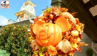 Fall is in the air at magic Kingdom