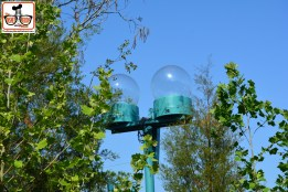"DNP April 2016 Photo Report: Animal Kingdom: Rivers of Light. These light globes are all around the rivers of light area - if your familiar with World of Color they play a role and align with he ""Glow with the show"" mickey ears."