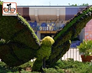 DNP April 2016 Photo Report: Epcot Flower and Garden Festival. Butterfly Garden - Always Popular