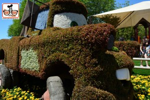 DNP April 2016 Photo Report: Epcot Flower and Garden Festival. Matter on Cactus Road Rally Play Area