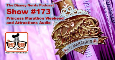 The Disney Nerds Podcast Show #173 - Princess Half and Park Audio