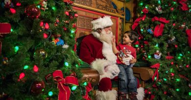 Guests are transported to a magical winter wonderland when they visit Disney Springs during the holiday season, complete with Santa's Chalet, the Disney Springs Christmas Tree Trail and entertainment abounds. Disney Springs is the shopping, dining and entertainment venue at Walt Disney World Resort located in Lake Buena Vista, Florida. (Matt Stroshane, photographer)