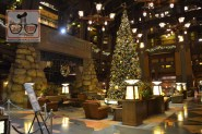 Christmas Tree in the Lobby of the Grand Californian