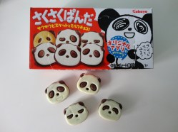 I chose chocolate panda cookies from Mitsuwa! My boyfriend's nickname is panda, so I always try to incorporate pandas into any gift or craft I give him!