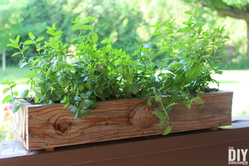 How to build planter boxes for herbs. These DIY planter boxes can also be used to plant flowers.