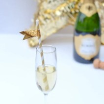 glass-of-champagne-with-diy-straw