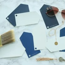 paint swatches navy white