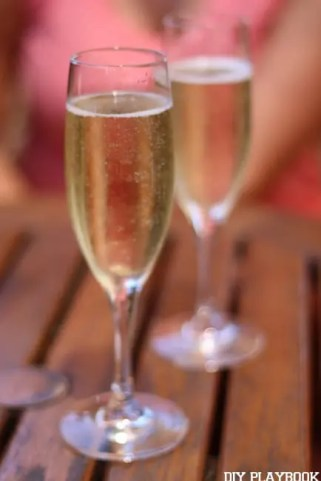 Cheers Wine Michaels Makers Sonoma, California