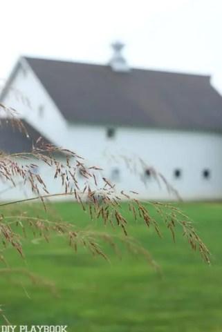 Fall Danada House