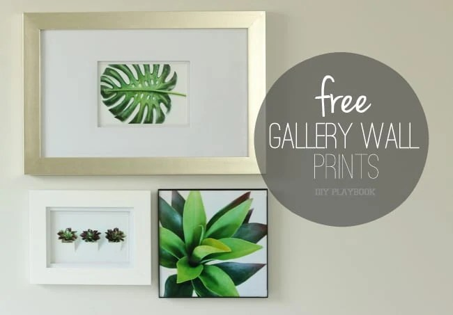 succulent_palm_free_printable_gallery_wall-001