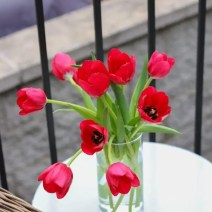 patio_balcony_outdoor_furniture_flowers
