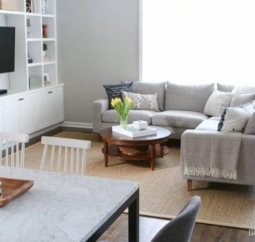 family-room-couch