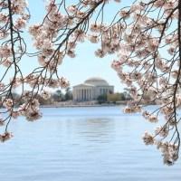 Washington_DC_Travel-12