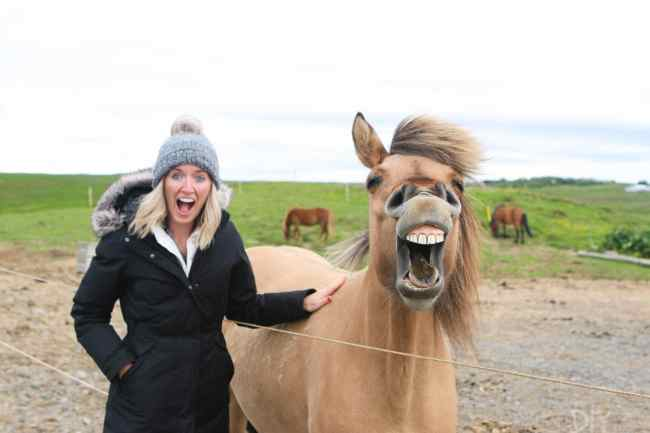 Travel_Iceland-bridget-horse