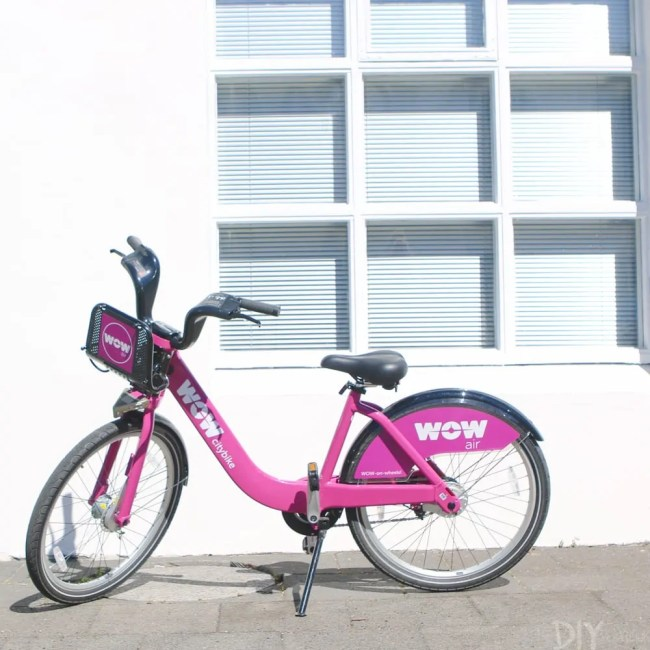 Travel_Iceland-pink-bike