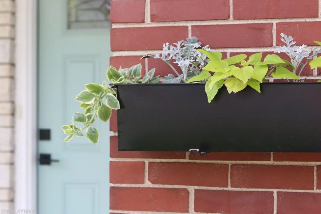 black_window_boxes