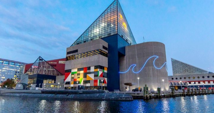 National Aquarium Offering Free Admission to Those Who Get Vaccinated on Site