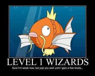 Level 1 wizards - they start out weak but when they gain a few levels...