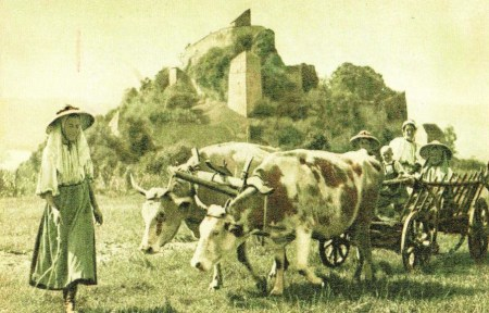 Dated photograph of a group of Transylvanian Saxons and an ox cart, with the citadel in the background.