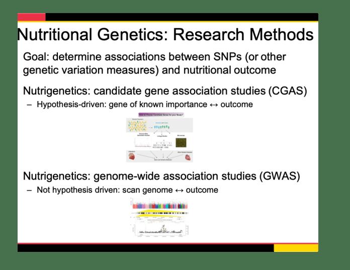 Nutritional genetics research methods (slide) 974 x 752