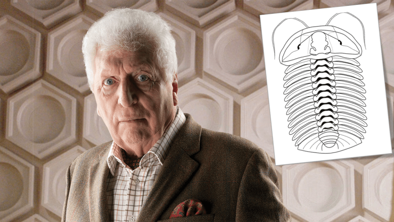 Newly-Discovered Ancient Marine Life Named After Fourth Doctor Actor, Tom Baker