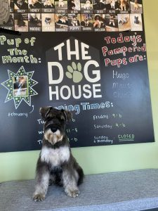 The Dog House Meltham Customer