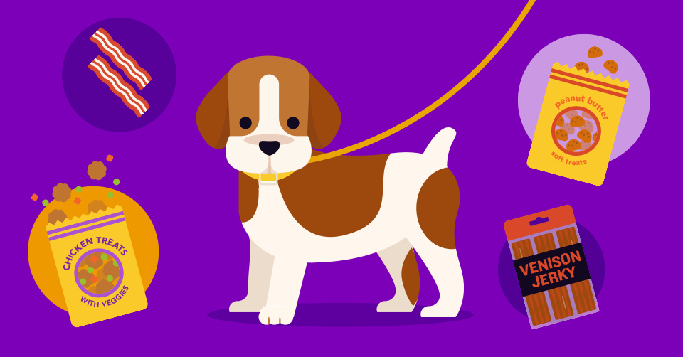 your new puppy training guide when to tackle each skill header 1