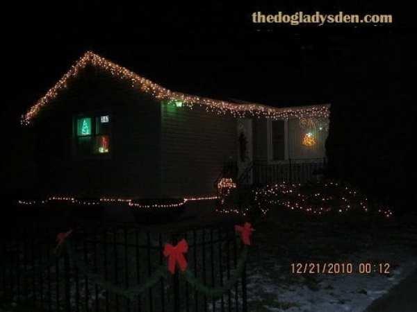christmas lights 2010 for the holiday season