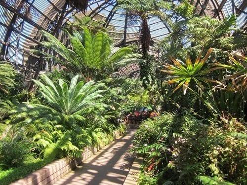 "Horticultural Bldg., Photo Friday, ""Green"""