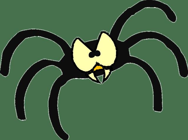 crazy spiders