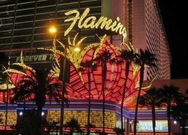 Flamingo Hotel - Scintillating