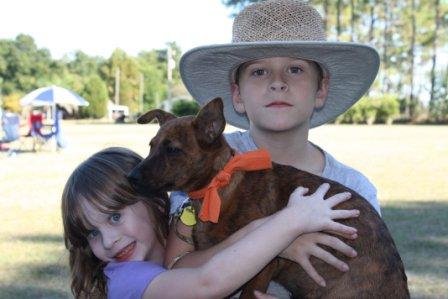 Durango the Australian Cattle Dog ~ Adopted
